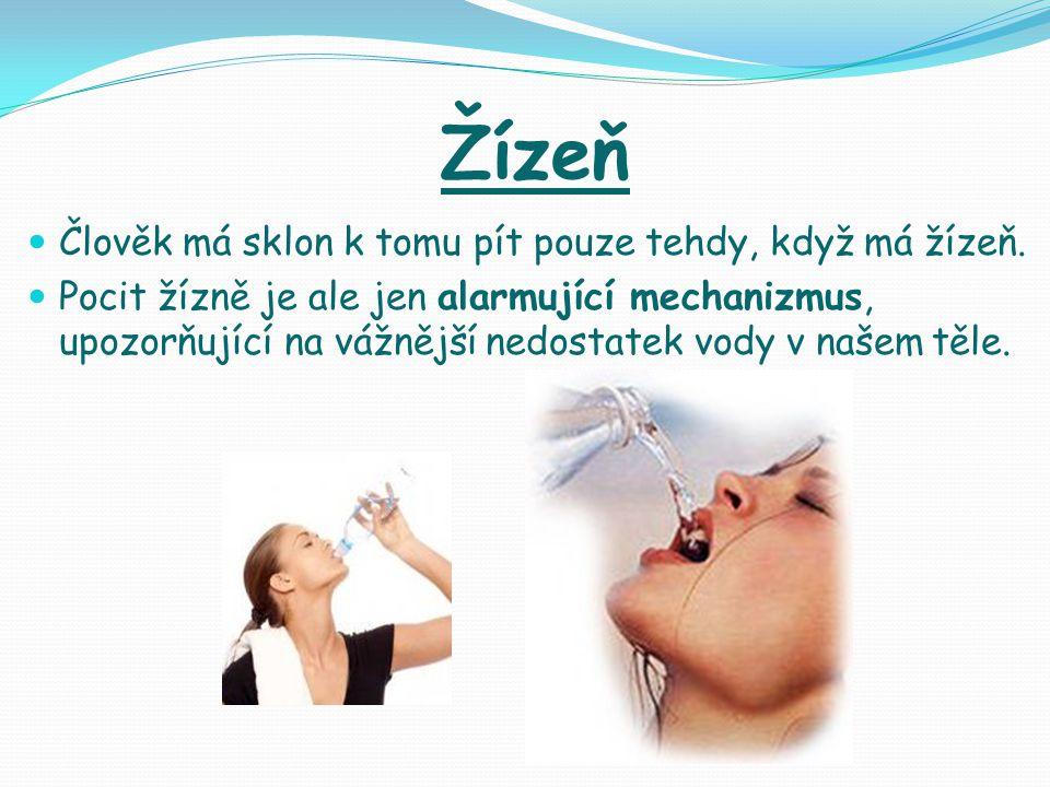 Žízeň Člověk má sklon k tomu pít pouze tehdy, když má žízeň.