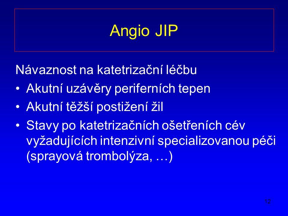 Angio JIP Návaznost na katetrizační léčbu