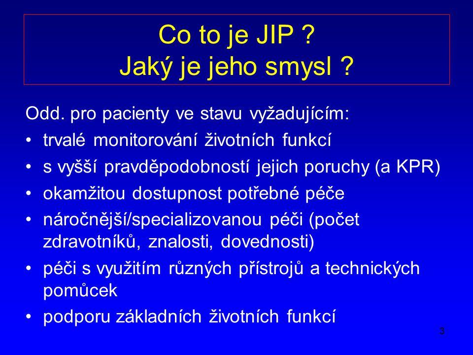 Co to je JIP Jaký je jeho smysl