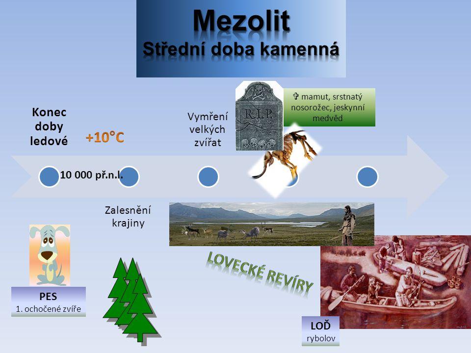 Mezolit Střední doba kamenná