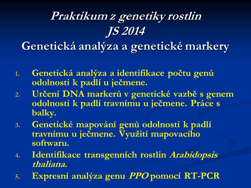 Praktikum z genetiky rostlin JS 2014 Genetická analýza a genetické markery