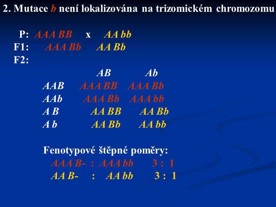 2. Mutace b není lokalizována na trizomickém chromozomu