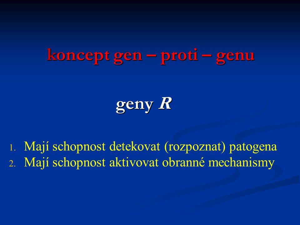koncept gen – proti – genu