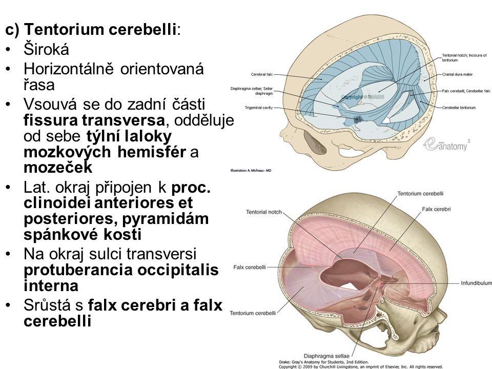 c) Tentorium cerebelli: