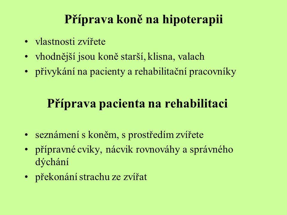 Příprava koně na hipoterapii