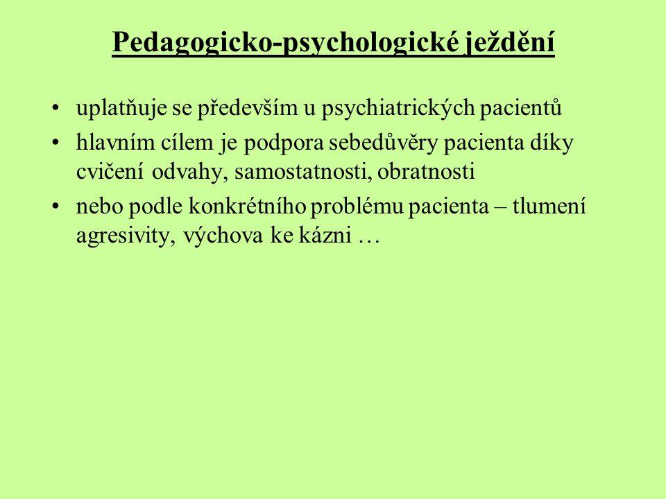 Pedagogicko-psychologické ježdění