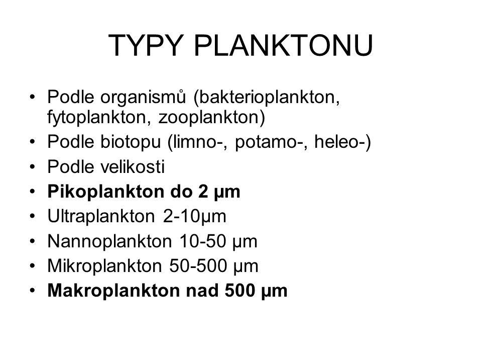 TYPY PLANKTONU Podle organismů (bakterioplankton, fytoplankton, zooplankton) Podle biotopu (limno-, potamo-, heleo-)