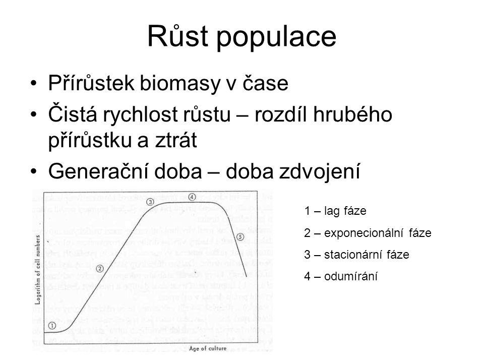 Růst populace Přírůstek biomasy v čase