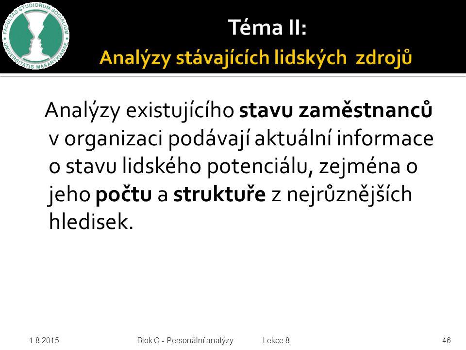 Téma II: Analýzy stávajících lidských zdrojů
