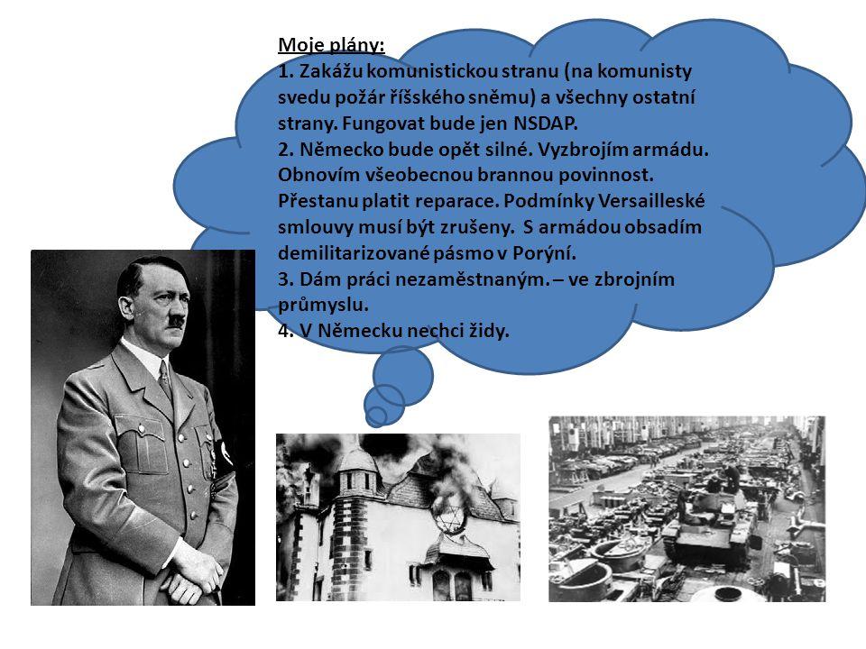 Moje plány: 1. Zakážu komunistickou stranu (na komunisty svedu požár říšského sněmu) a všechny ostatní strany. Fungovat bude jen NSDAP.