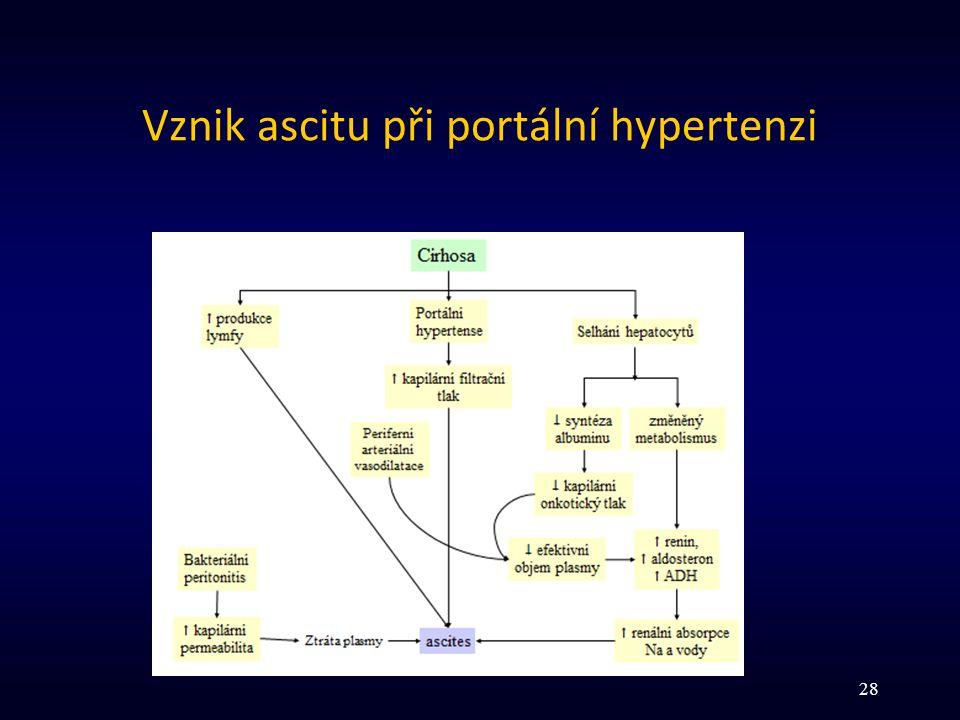 Vznik ascitu při portální hypertenzi