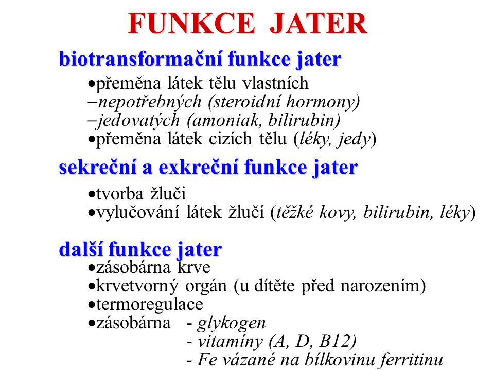 FUNKCE JATER biotransformační funkce jater