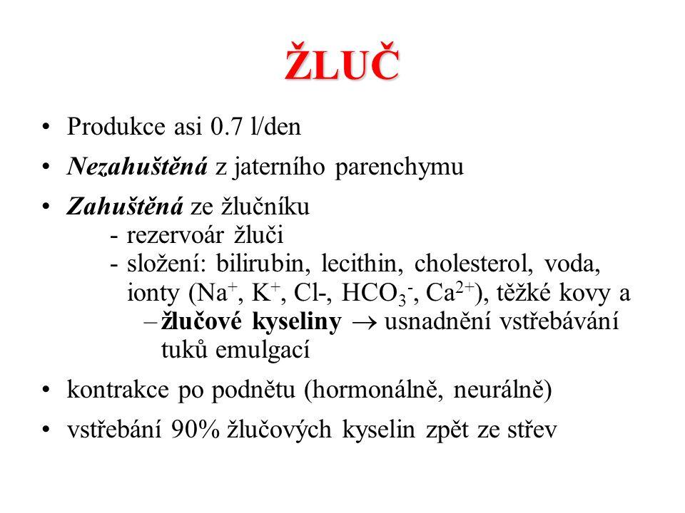 ŽLUČ Produkce asi 0.7 l/den Nezahuštěná z jaterního parenchymu