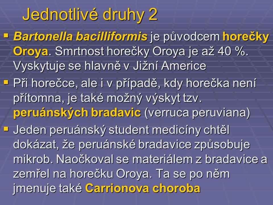 Jednotlivé druhy 2 Bartonella bacilliformis je původcem horečky Oroya. Smrtnost horečky Oroya je až 40 %. Vyskytuje se hlavně v Jižní Americe.