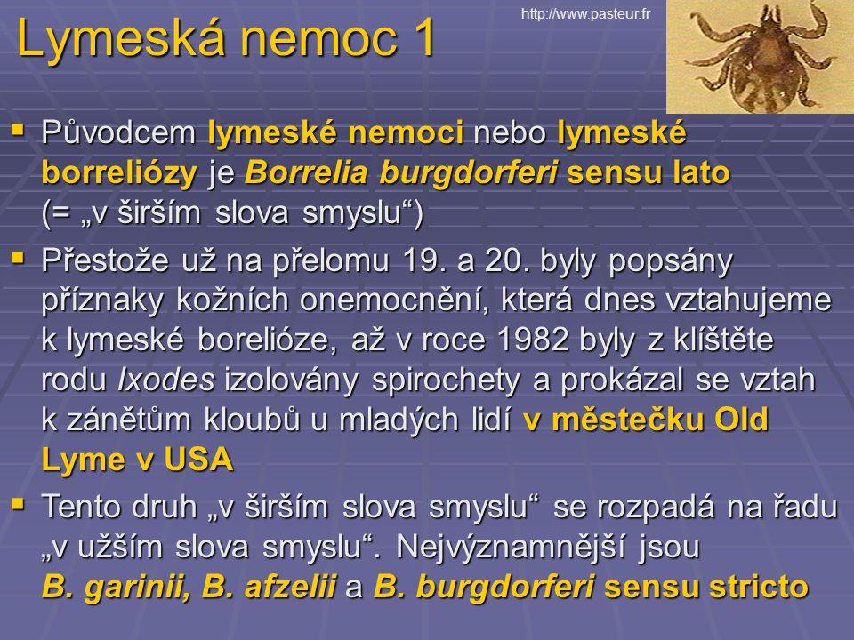 Lymeská nemoc 1 http://www.pasteur.fr.