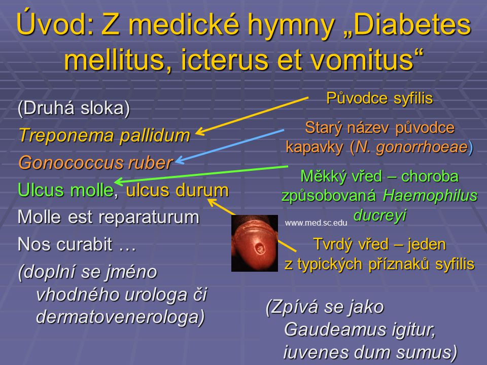 "Úvod: Z medické hymny ""Diabetes mellitus, icterus et vomitus"
