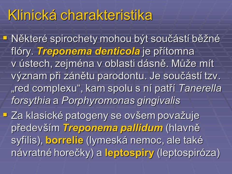 Klinická charakteristika