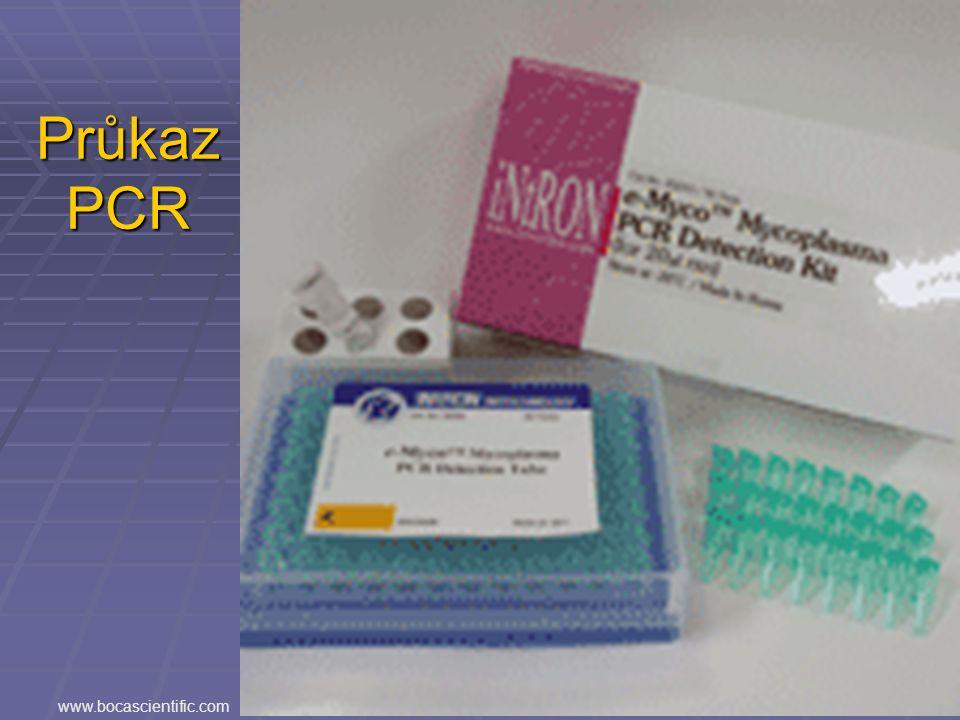 Průkaz PCR www.bocascientific.com