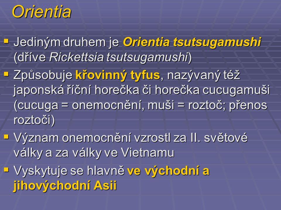 Orientia Jediným druhem je Orientia tsutsugamushi (dříve Rickettsia tsutsugamushi)