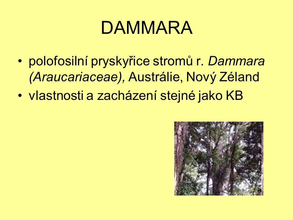 DAMMARA polofosilní pryskyřice stromů r. Dammara (Araucariaceae), Austrálie, Nový Zéland.