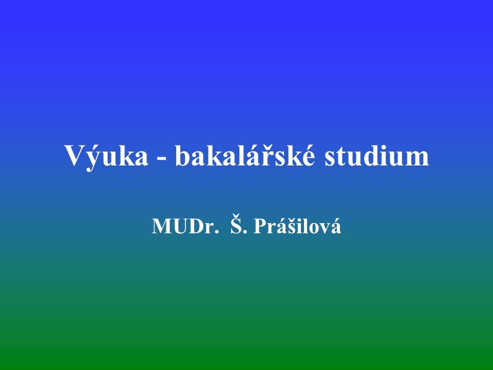 Výuka - bakalářské studium