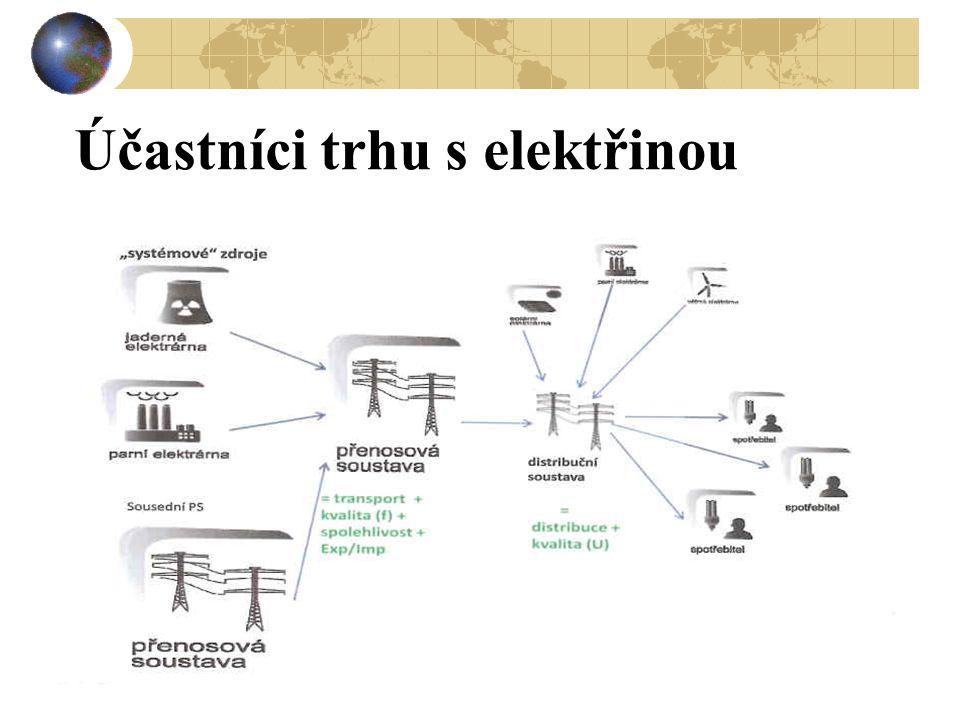 Účastníci trhu s elektřinou