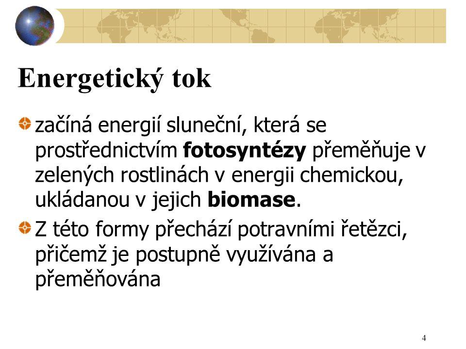 Energetický tok