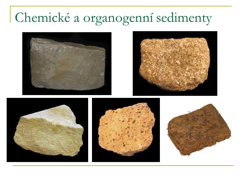 Chemické a organogenní sedimenty
