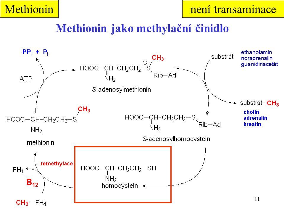 Methionin jako methylační činidlo