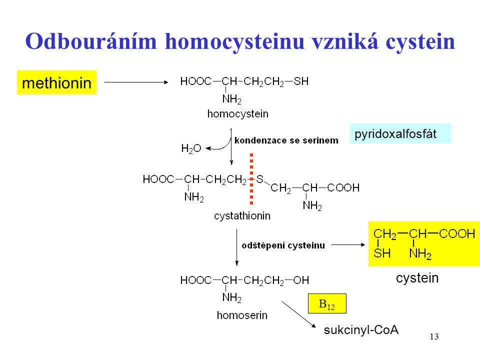 Odbouráním homocysteinu vzniká cystein