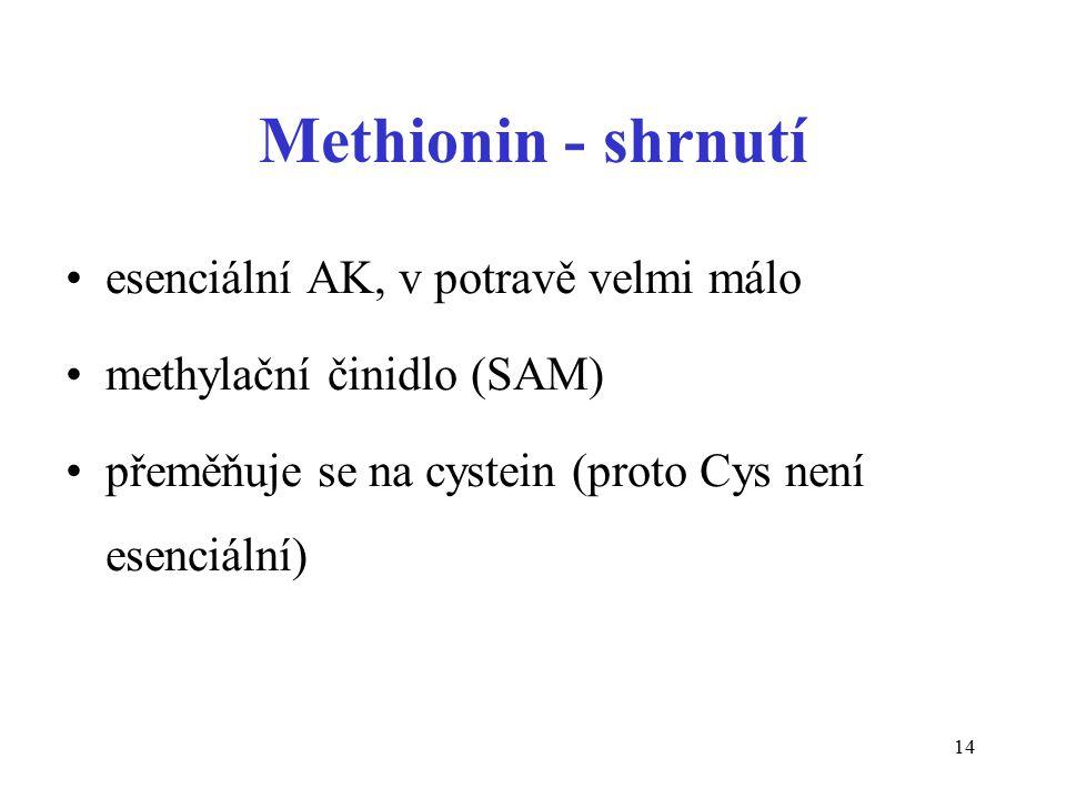 Methionin - shrnutí esenciální AK, v potravě velmi málo