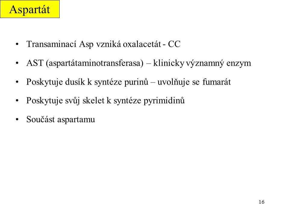 Aspartát Transaminací Asp vzniká oxalacetát - CC