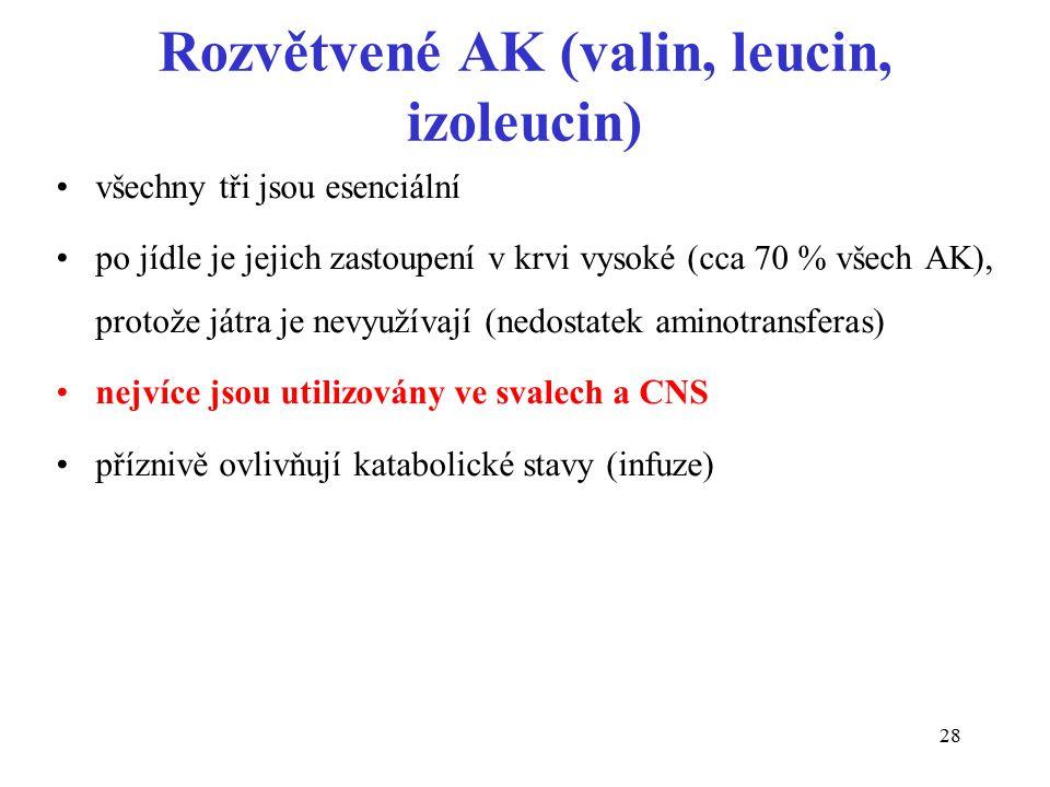 Rozvětvené AK (valin, leucin, izoleucin)