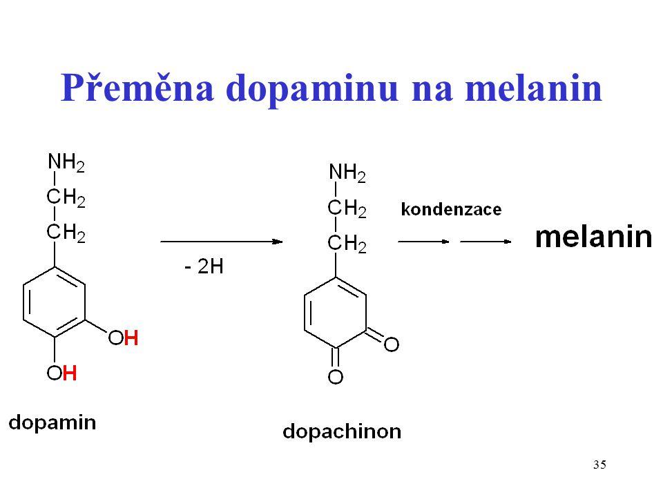 Přeměna dopaminu na melanin