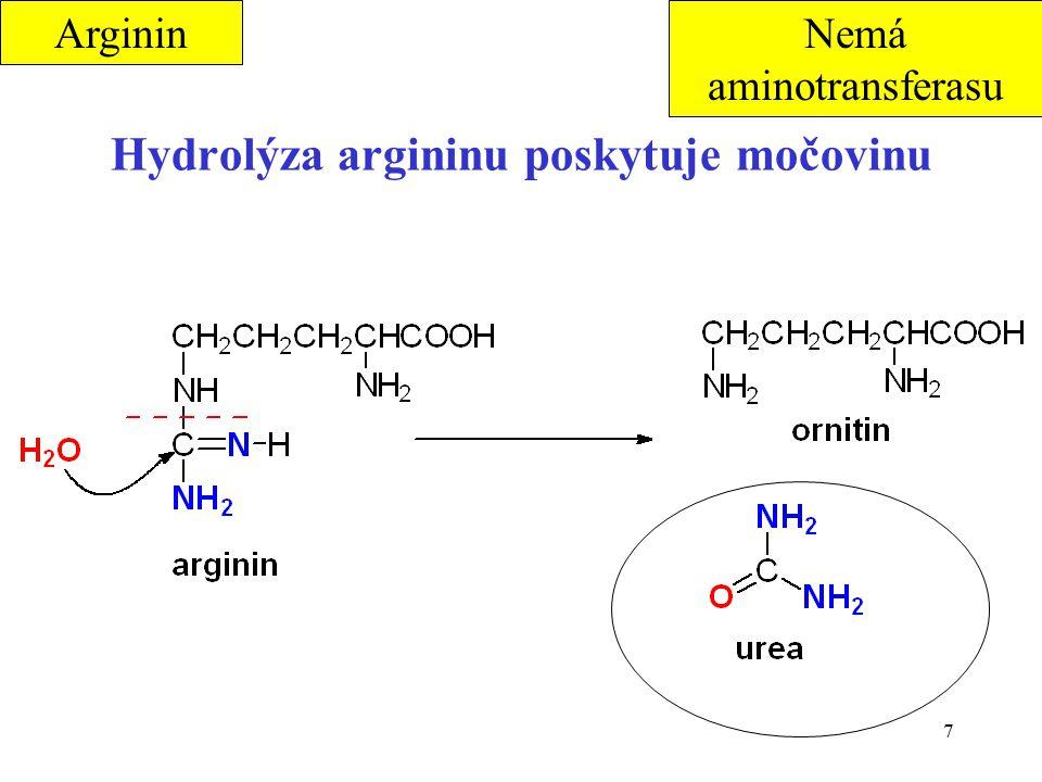 Hydrolýza argininu poskytuje močovinu