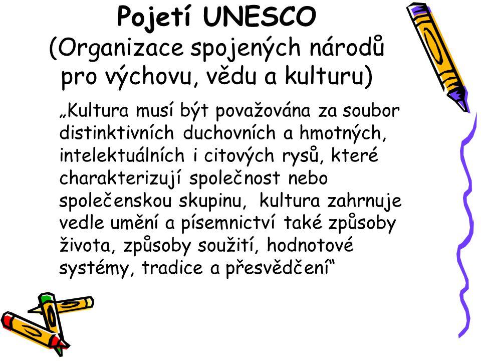 Pojetí UNESCO (Organizace spojených národů pro výchovu, vědu a kulturu)