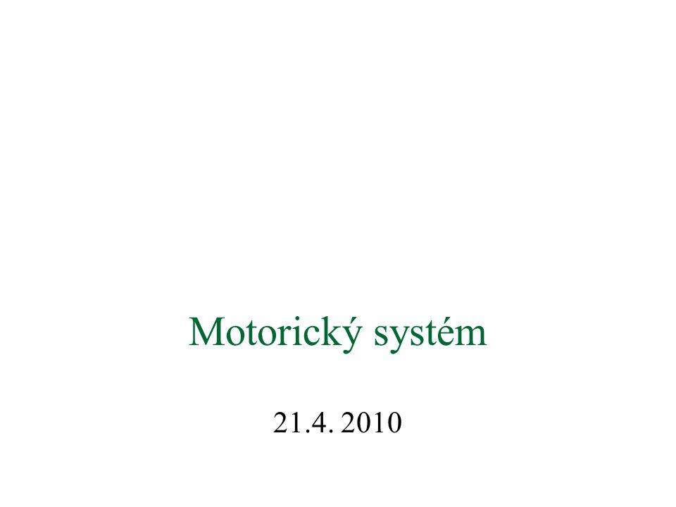 Motorický systém 21.4. 2010