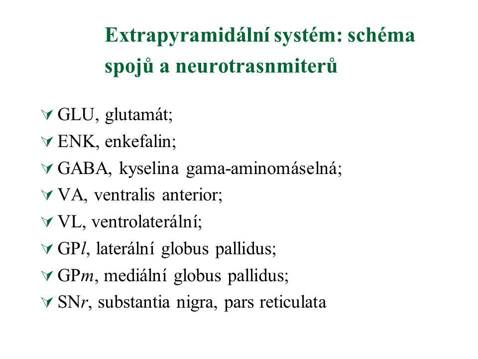 Extrapyramidální systém: schéma spojů a neurotrasnmiterů