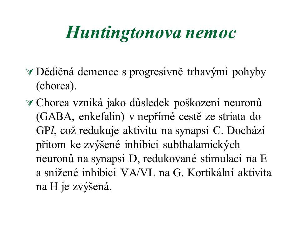 Huntingtonova nemoc Dědičná demence s progresivně trhavými pohyby (chorea).