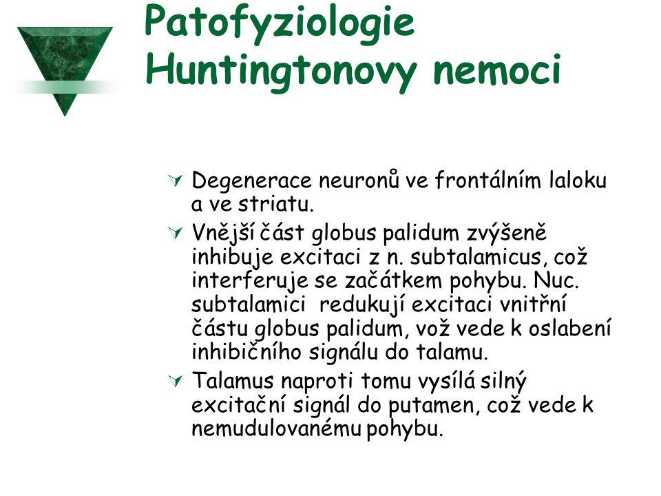 Patofyziologie Huntingtonovy nemoci