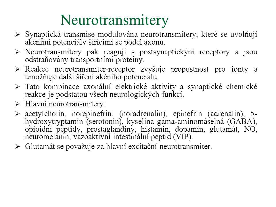 Neurotransmitery Synaptická transmise modulována neurotransmitery, které se uvolňují akčními potenciály šířícími se podél axonu.