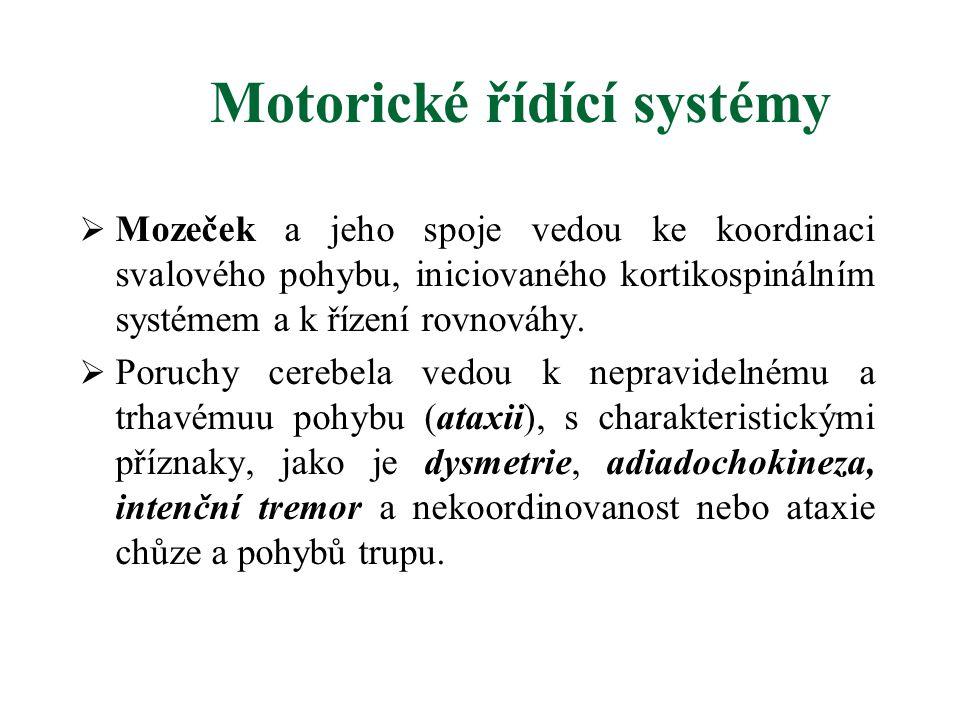Motorické řídící systémy