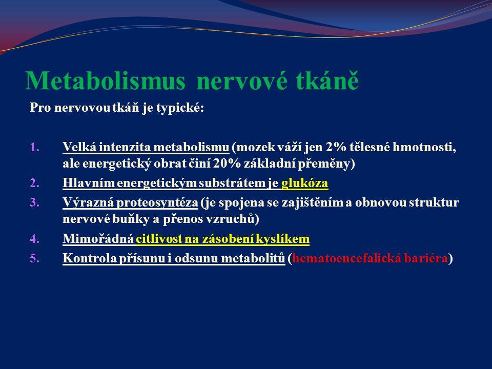 Metabolismus nervové tkáně