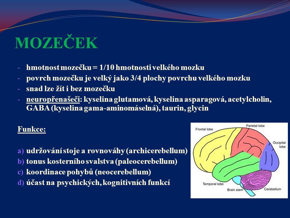 MOZEČEK hmotnost mozečku = 1/10 hmotnosti velkého mozku