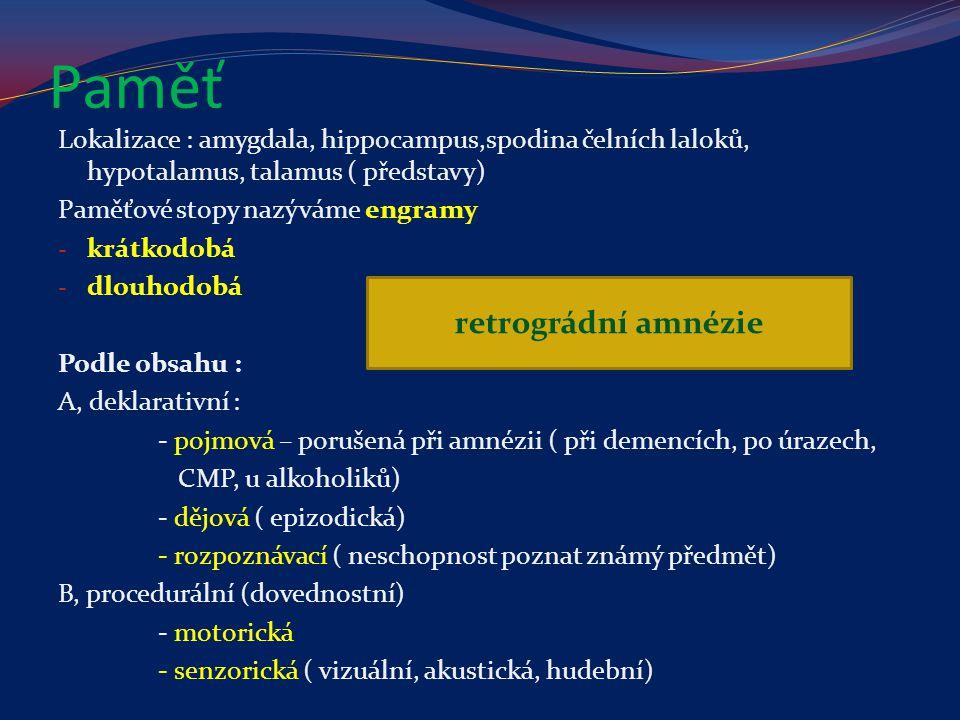 Paměť retrográdní amnézie