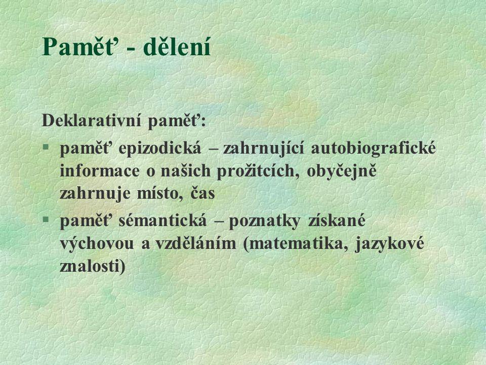Paměť - dělení Deklarativní paměť:
