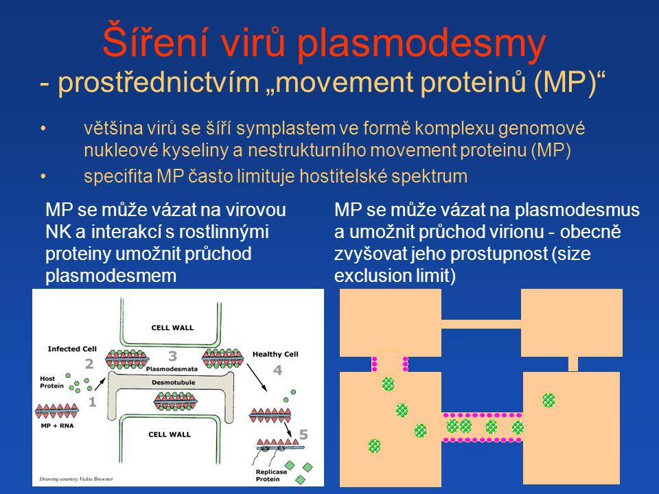 Šíření virů plasmodesmy