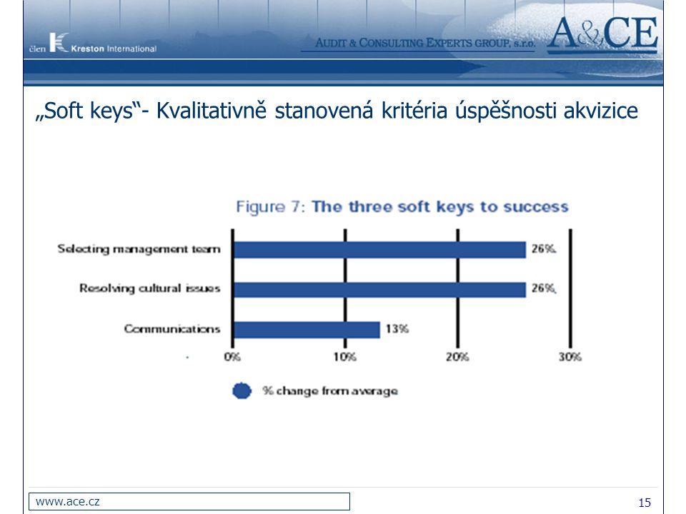"""""""Soft keys - Kvalitativně stanovená kritéria úspěšnosti akvizice"""