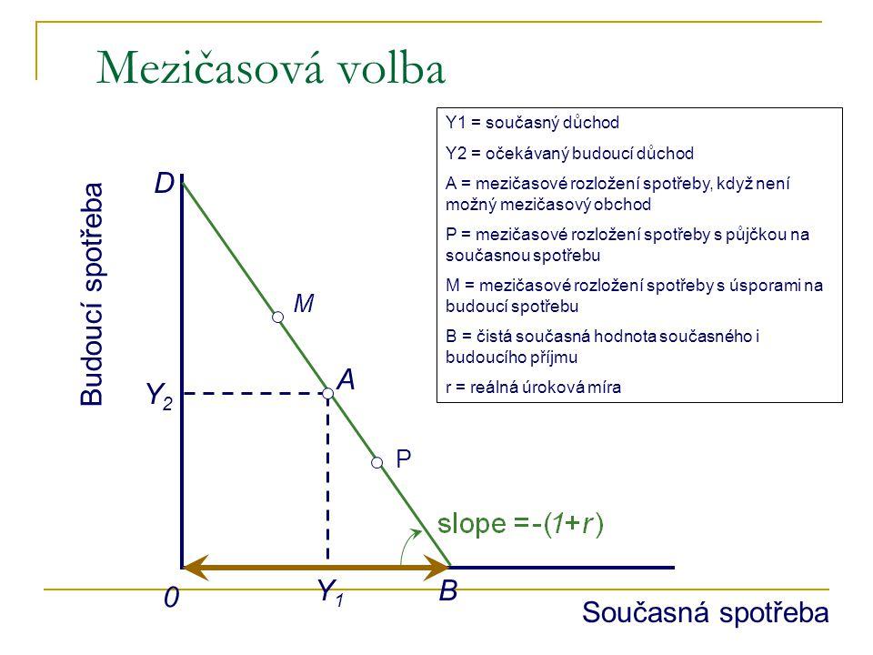 Mezičasová volba D B Budoucí spotřeba A Y1 Y2 Současná spotřeba M P