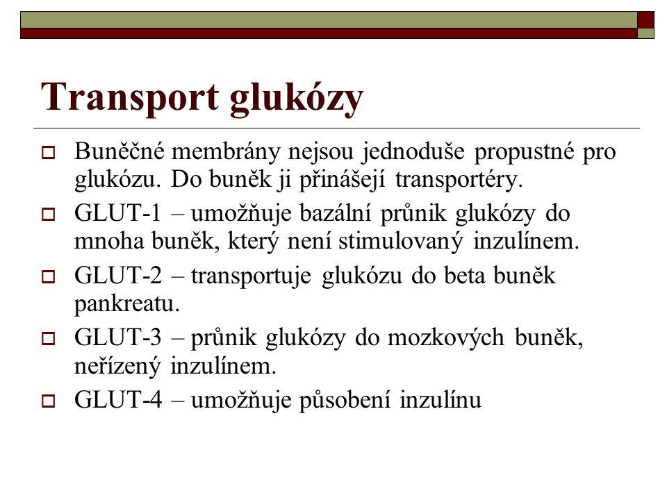 Transport glukózy Buněčné membrány nejsou jednoduše propustné pro glukózu. Do buněk ji přinášejí transportéry.
